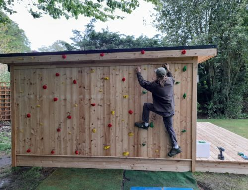 Nordic Room with climbing wall